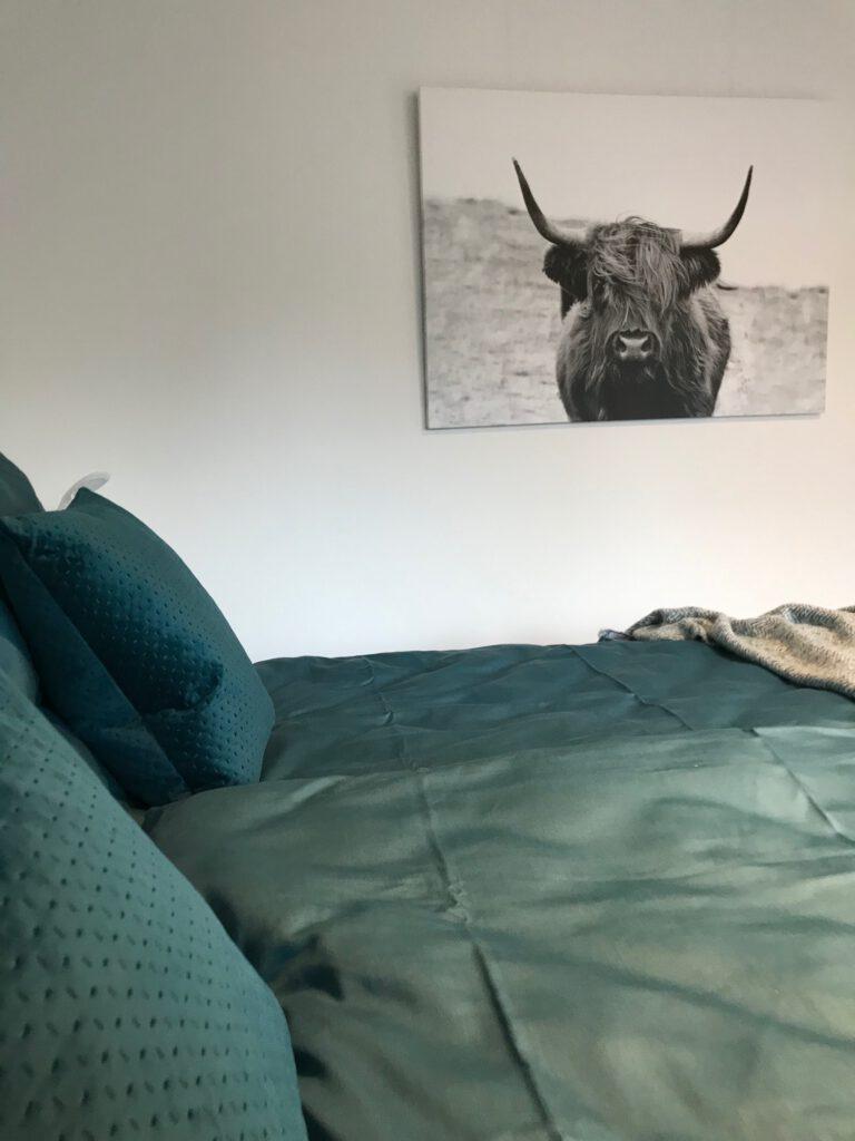 """Grundrisse und Ansichten der """"Villa Aldenburg"""" - In dem petrolfarbenen Zimmer findet sich auch ein gemütliches Boxspringbett"""